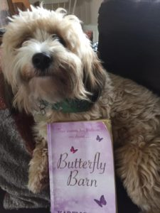 barney-with-bb